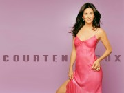 Courteney Cox : Sexy Wallpapers x 5