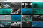 Zatopione okrêty / Quest for Sunken Warships (2007) PL.TVRip.XviD / Lektor PL