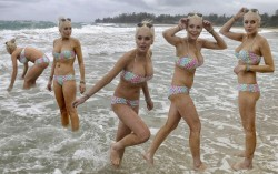 Lindsay Lohan, MeganFox, Laura Prepon, Olivia Wilde, Mena Suvari (Wallpaper) 6x