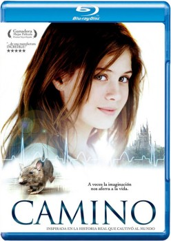 Camino 2008 m720p BluRay x264-BiRD